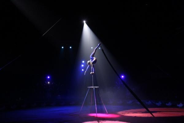 Встигнути щоб побачити. Цирк Кобзов дає останні шоу-програми в Києві